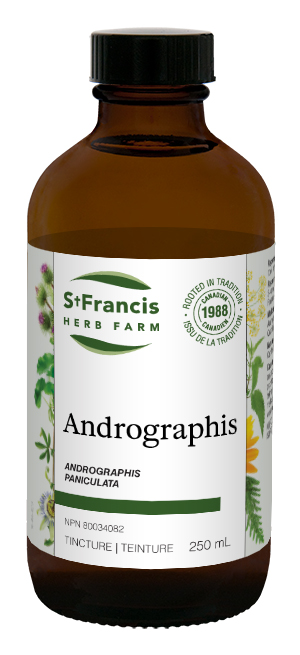 Andrographis - By St. Francis Herb Farm