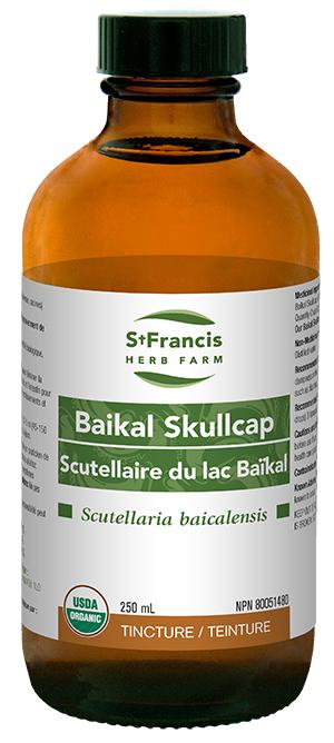 Baikal Skullcap - By St. Francis Herb Farm