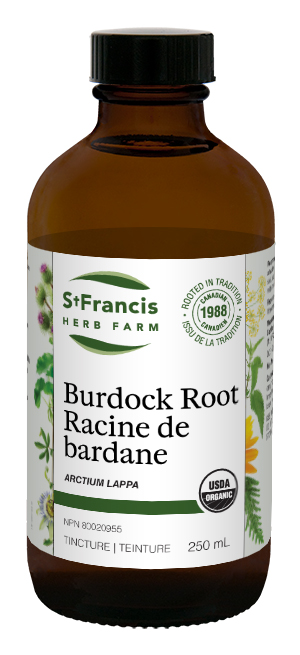 Burdock Root - By St. Francis Herb Farm