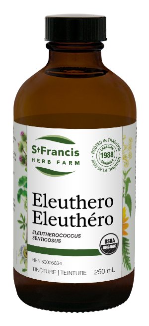 Eleuthero - By St. Francis Herb Farm