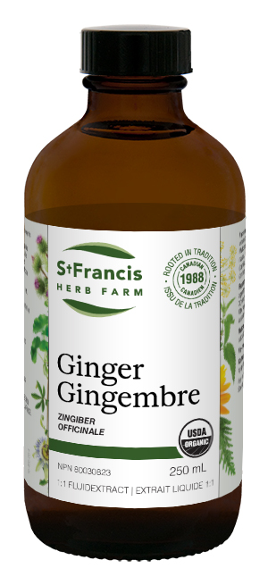 Ginger - By St. Francis Herb Farm