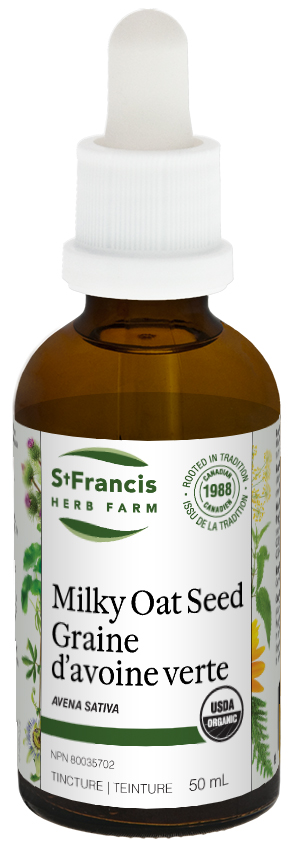 Milky Oat Seed - By St. Francis Herb Farm