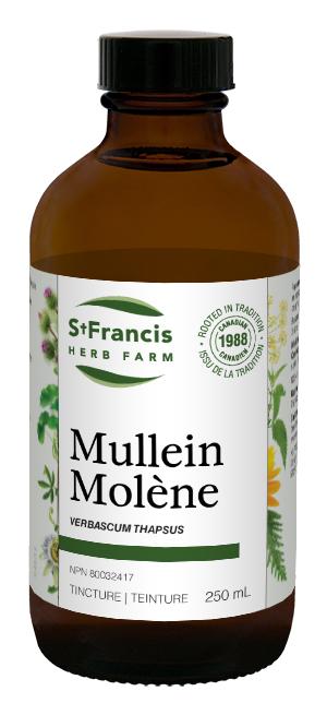 Mullein - By St. Francis Herb Farm
