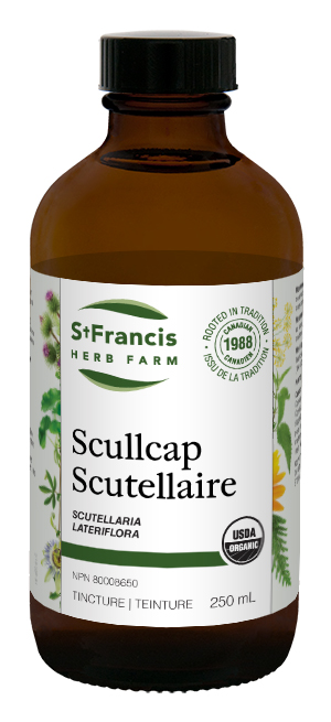 Scullcap - By St. Francis Herb Farm