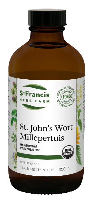 St. John's Wort - By St. Francis Herb Farm