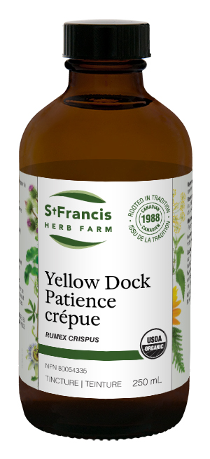 Yellow Dock - By St. Francis Herb Farm