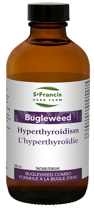 Bugleweed Combo - By St. Francis Herb Farm