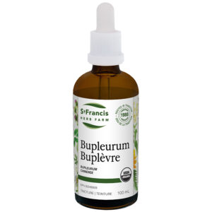 Bupleurum - By St. Francis Herb Farm