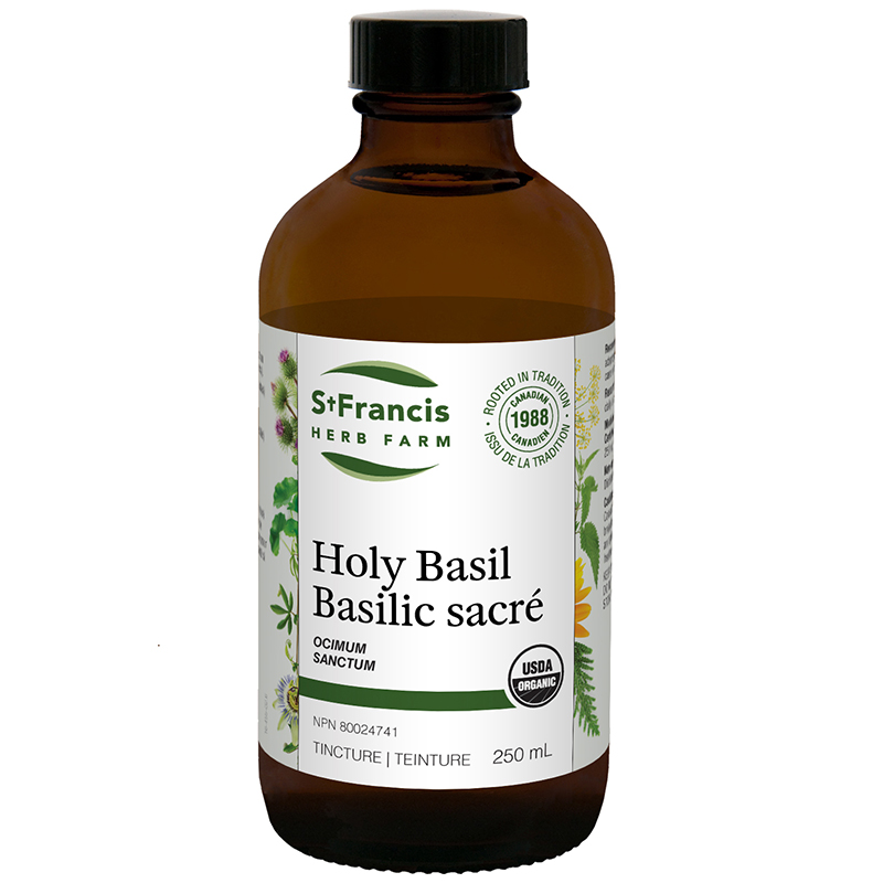 Holy Basil By St. Francis Herb Farm