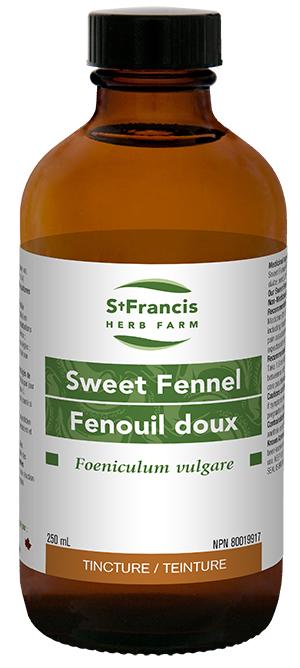 Sweet Fennel