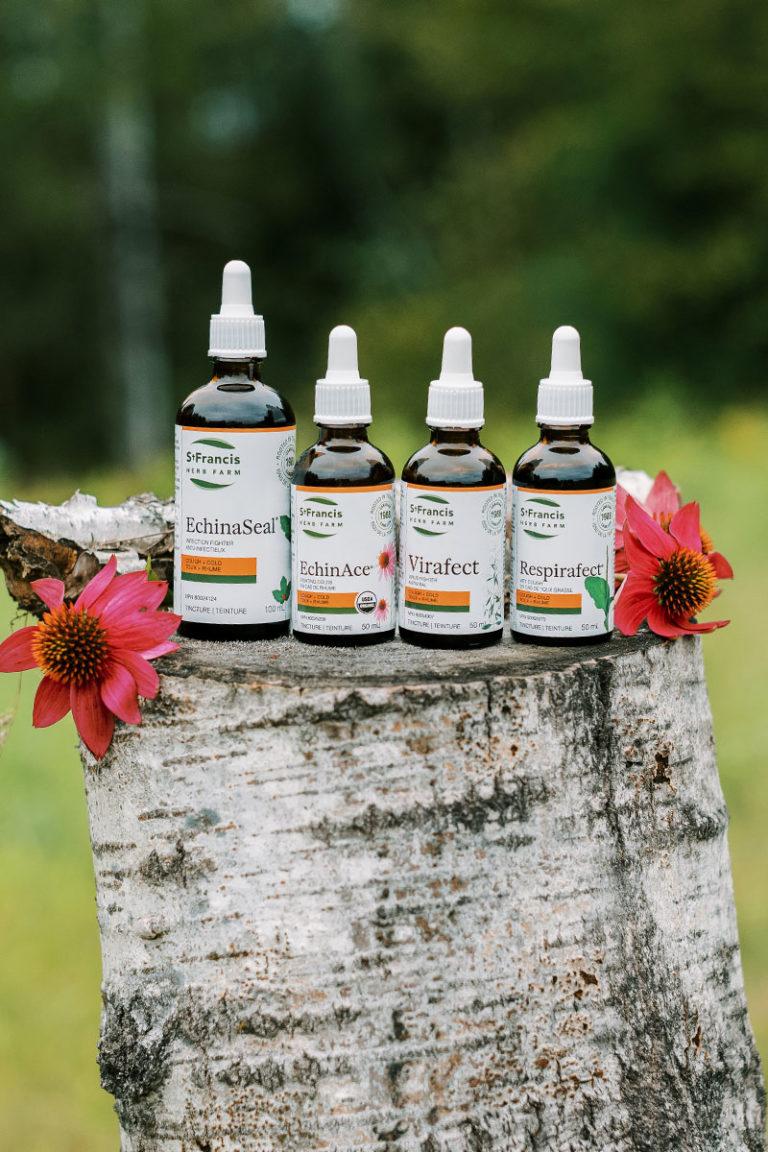Plant Medicine 101 - Tinctures - Row of Tincture Bottles